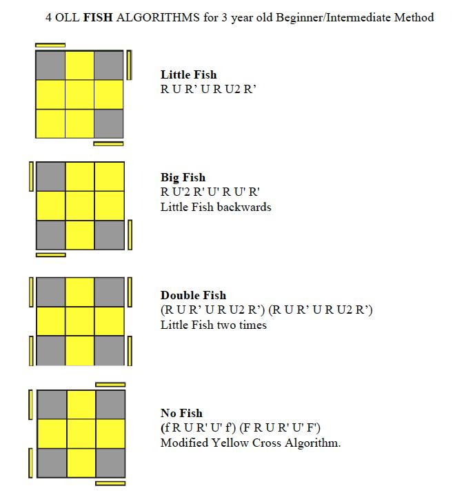 Learn How To Solve Rubik's Cube Fish Algorithms