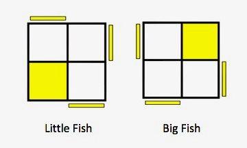 Fish Algorithms Sune